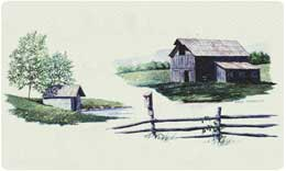 Bacova Mailbox Countryside 10094