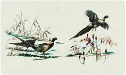 Bacova Mailbox Pheasant 10002