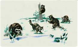Bacova Mailbox Raccoons 10042