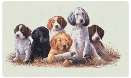 Bacova Mailbox School Daze Puppies 10328